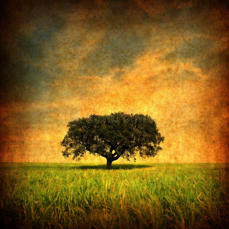 Grunge Hintergrund mit einsamem Baum lizenzfreie abbildung