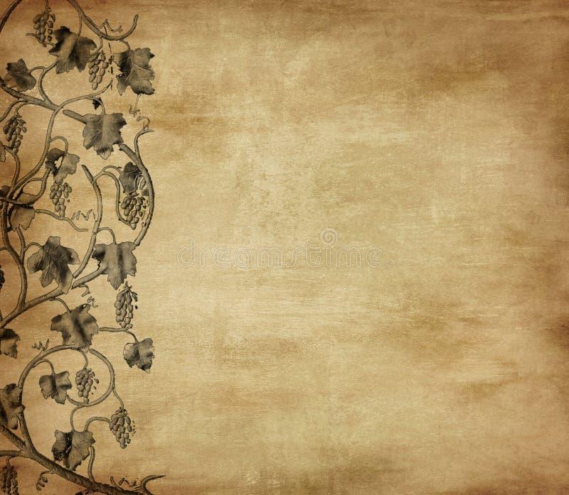 Grunge Hintergrund mit Traube stock abbildung