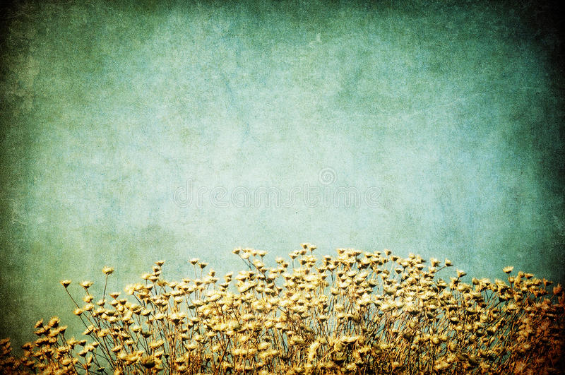 Grunge image of a field royalty free stock photo