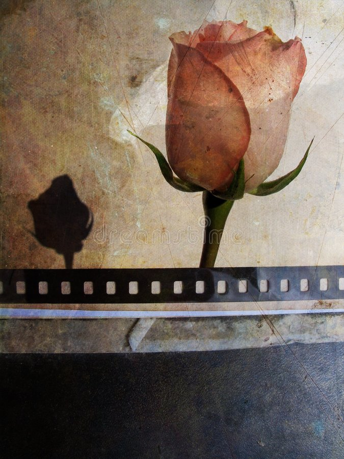 grunge karty rose royalty ilustracja