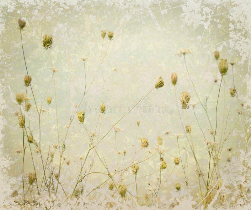 Grunge Lattenwiesen-Blumen-Kunst-Hintergrund vektor abbildung