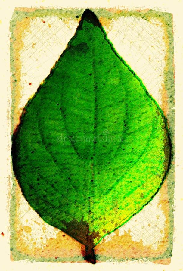 Grunge Leaf. This is a grunge illustration of a leaf vector illustration