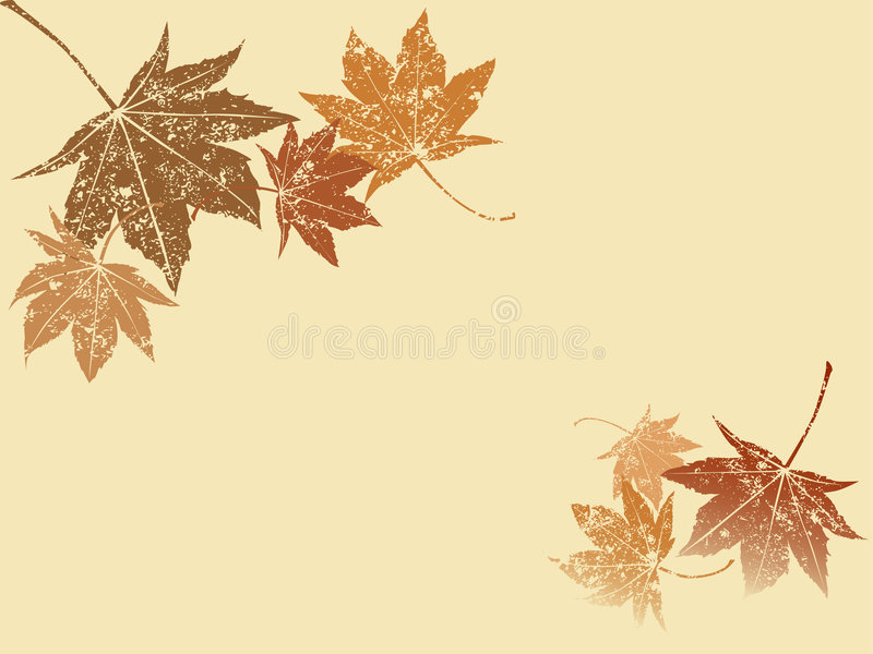Download Grunge maple leaf stock vector. Illustration of maple - 5965395