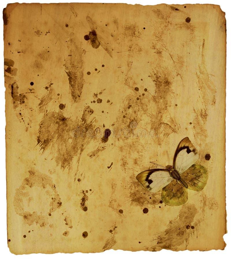 grunge motyla papieru obrazy royalty free