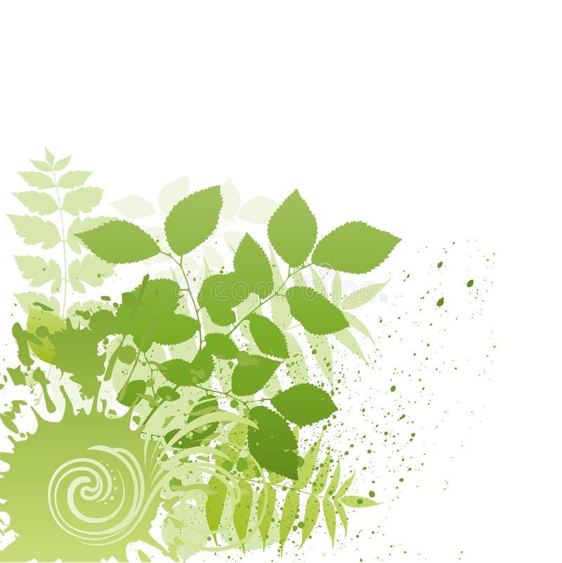 grunge nature leaf stock illustration