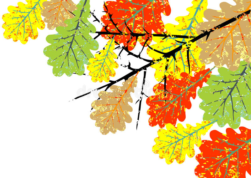 Download Grunge oak leaves stock vector. Image of colorful, white - 34337201