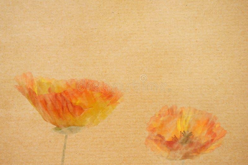 Grunge Oranje Papavers op document achtergrond royalty-vrije illustratie