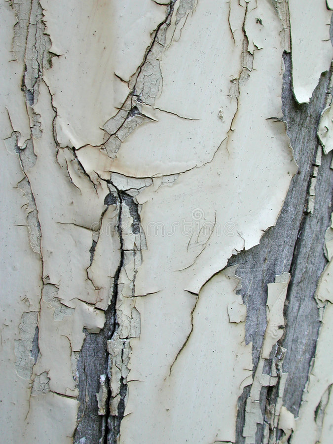 Grunge Paint Peeling Texture