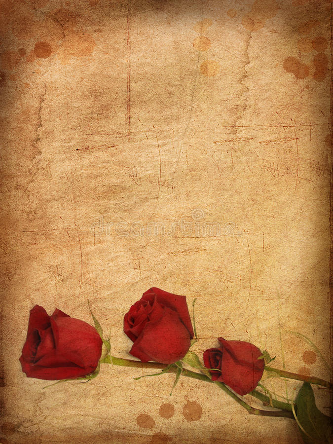 Grunge paper with red roses. vector illustration