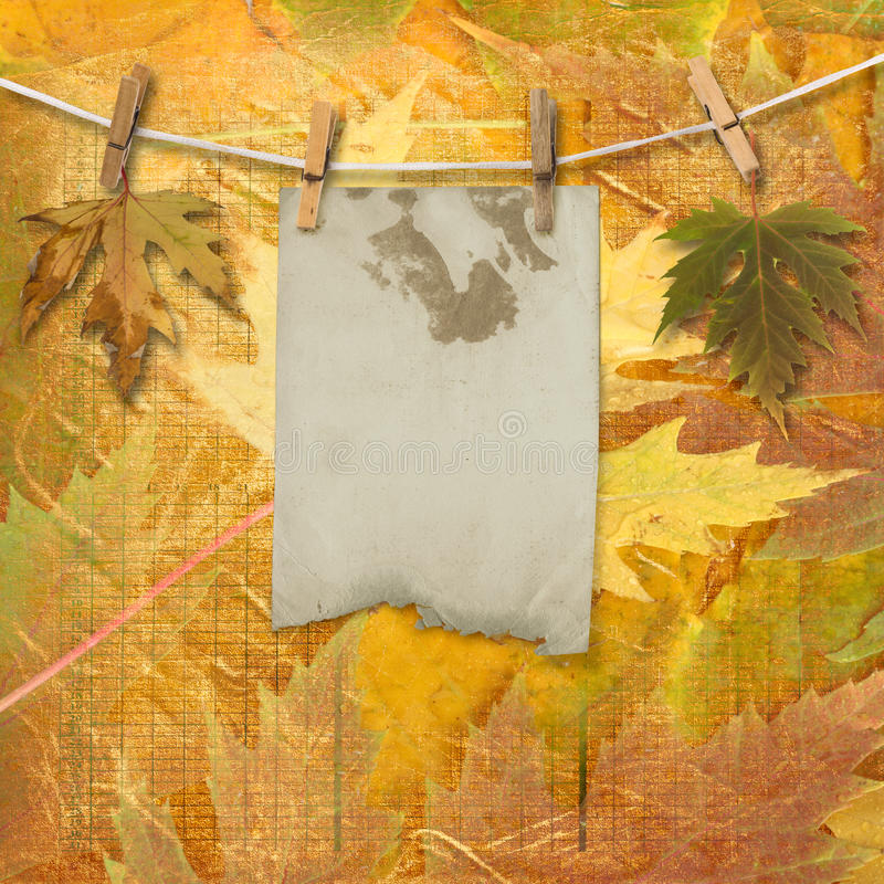 Download Grunge Papers Design With Foliage Royalty Free Stock Photo - Image: 21609585