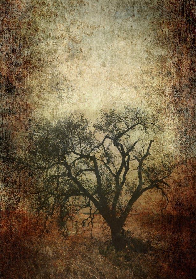 Grunge Papiereichenbaum lizenzfreie abbildung