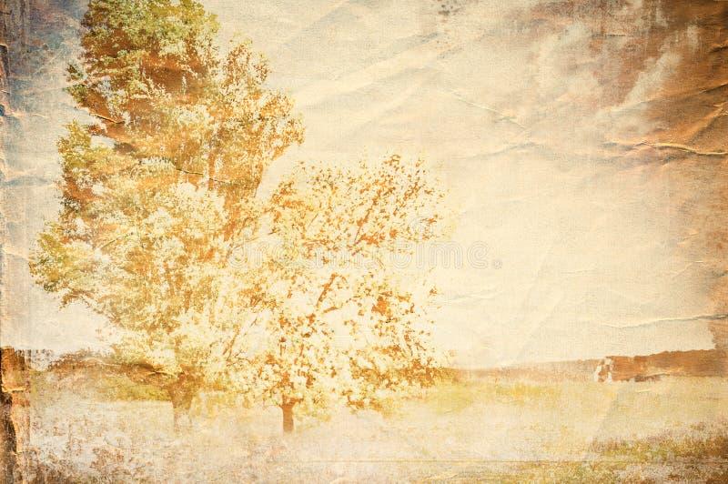 grunge papieru tekstura ilustracja wektor