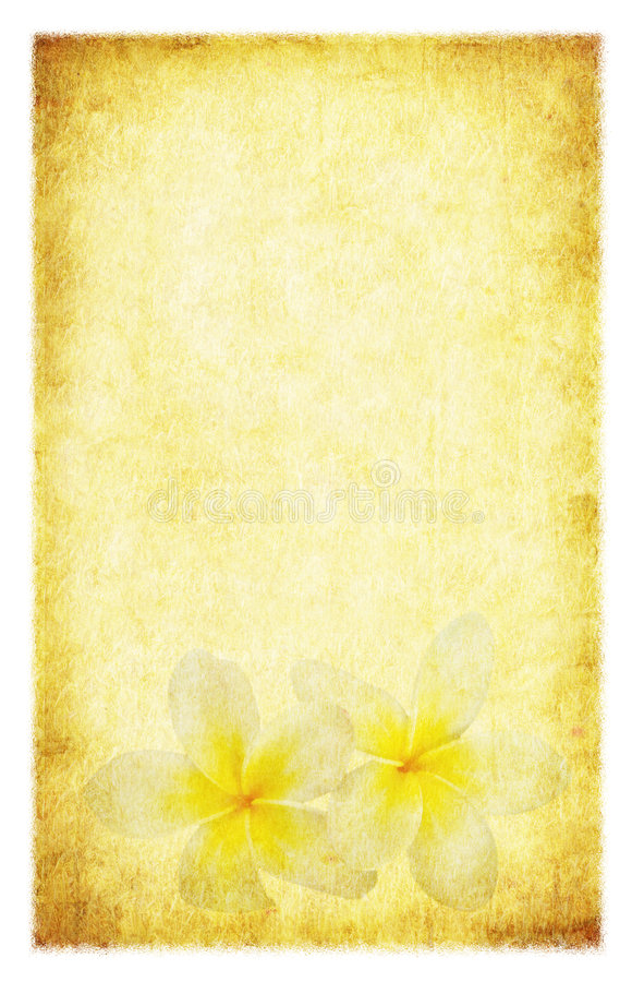 Download Grunge Plumeria stock illustration. Image of stained, fashioned - 7014963