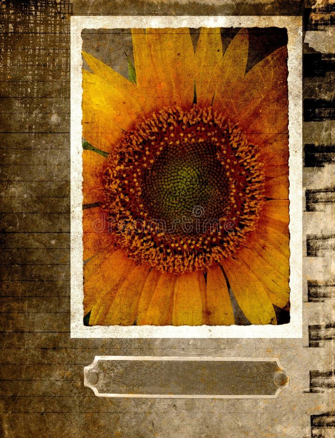 Free Grunge Postcard With Sunflower 2 Royalty Free Stock Image - 1513536
