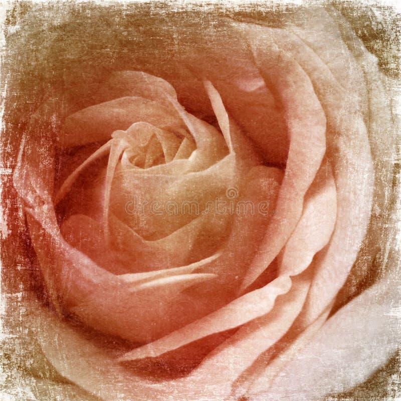 Grunge róż tło zdjęcie stock