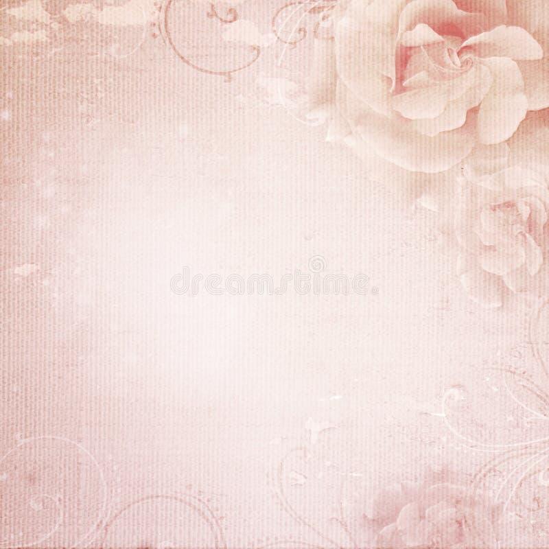 Grunge różowy ślubny tło z różami fotografia stock