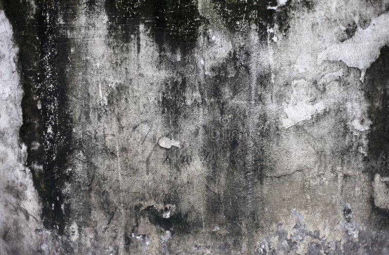 Grunge rachou o muro de cimento ilustração do vetor