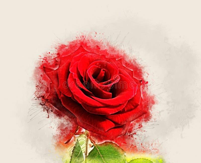 Grunge Rose image vector illustration