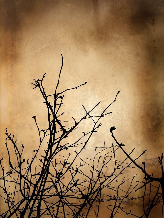 grunge tła zimy. fotografia stock