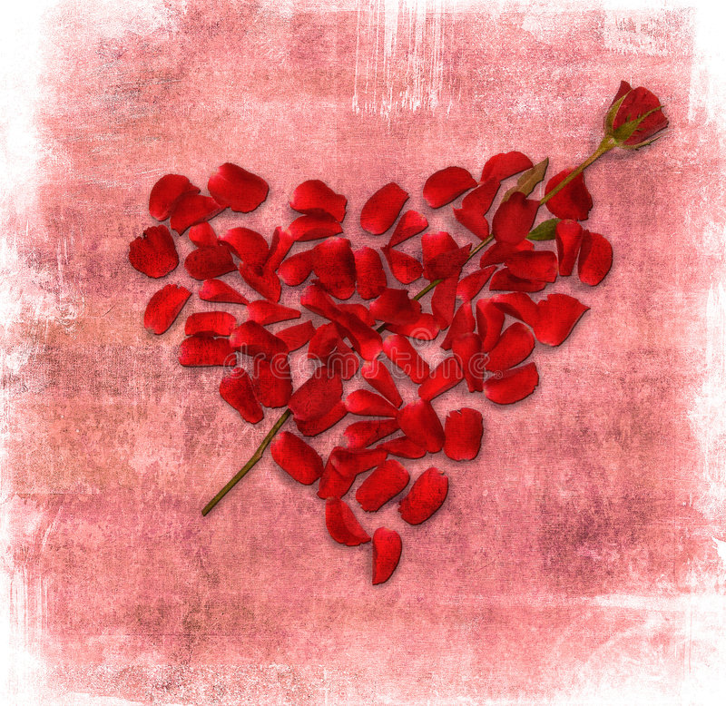 Grunge tło z sercem robić różani płatki royalty ilustracja