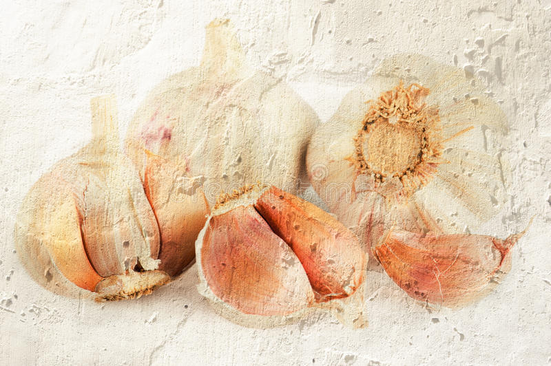 Grunge texture in vintage style with vegetables and spices royalty free stock image