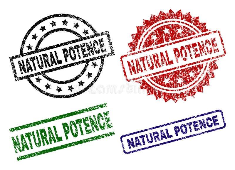 Grunge Textured NATURALNYCH POTENCE foki znaczki ilustracja wektor