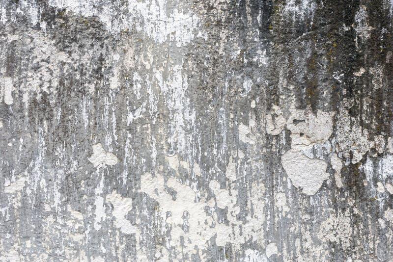 Grunge texturerar bakgrunder Perfekt bakgrund med utrymme royaltyfri foto