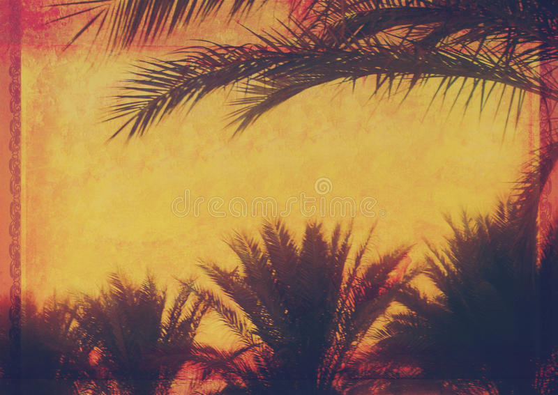 Grunge tropical background with coconut palm trees. Image in vintage style stock illustration