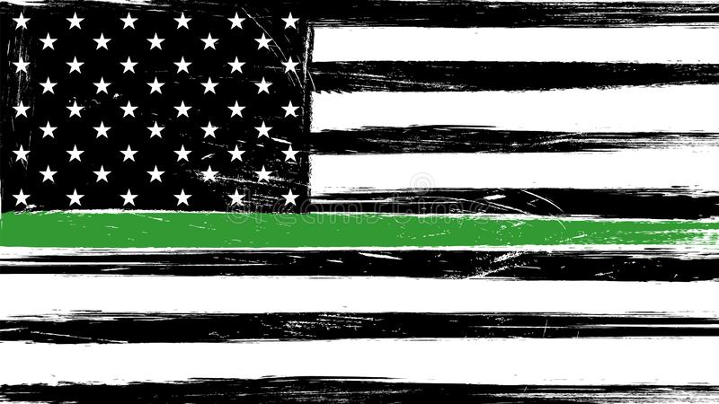 Grunge USA flag with a thin green line vector illustration
