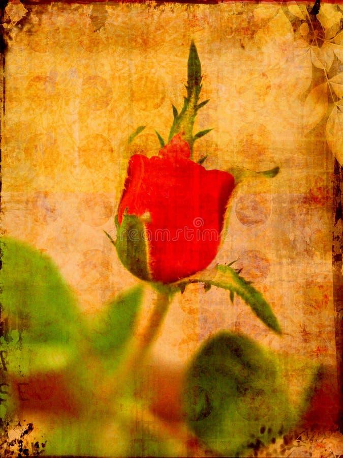 Download Grunge valentine rose stock illustration. Image of worn - 3736129