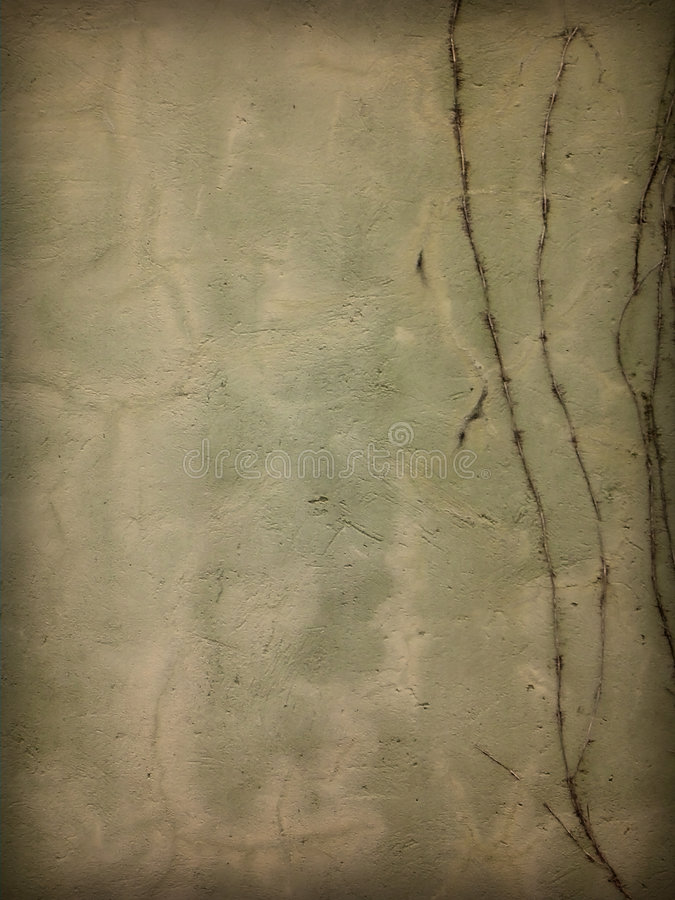 Grunge wall. Cement Grunge wall with vines vector illustration