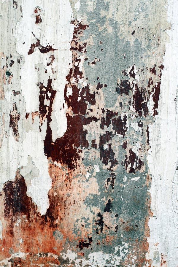 Free Grunge Wall Background Stock Photos - 12879223