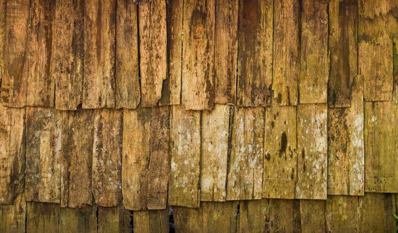 Grunge Wood panels for background stock image
