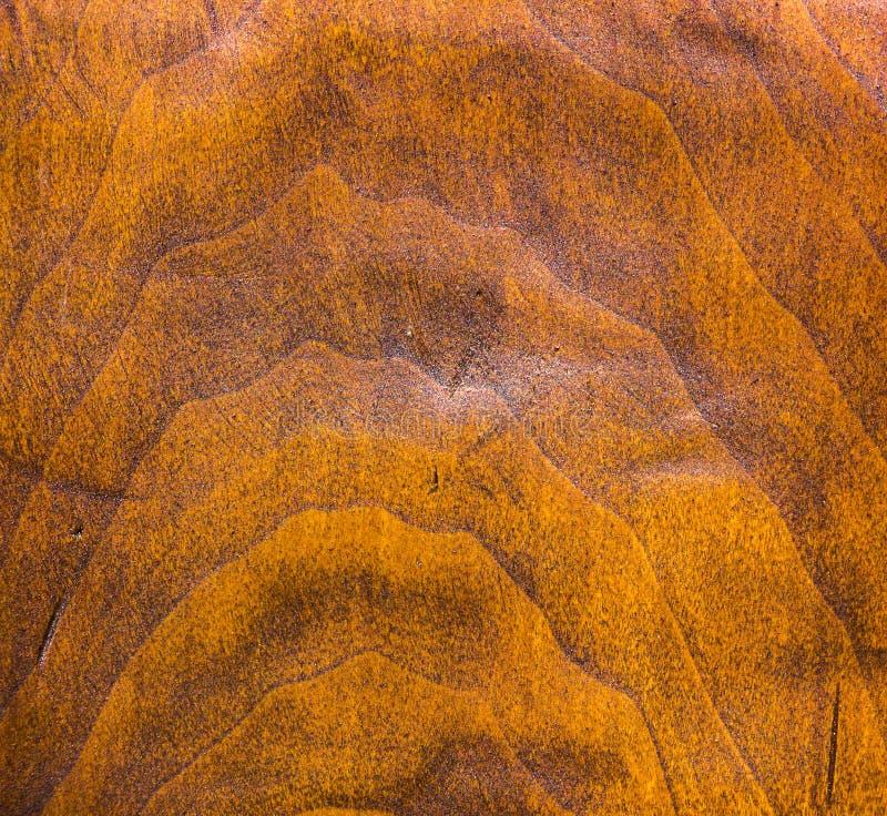 Grunge wood pattern texture royalty free stock photos