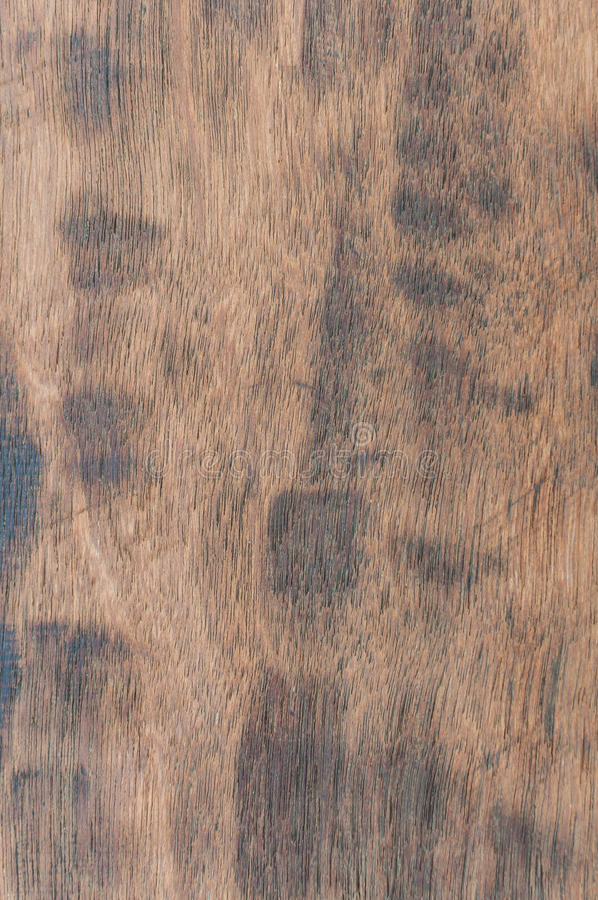 Download Grunge wood texture stock photo. Image of wooden, panel - 39879898