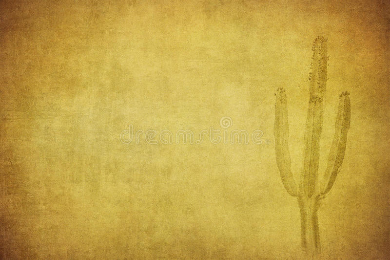 Grungeachtergrond met wild het westenlandschap vector illustratie