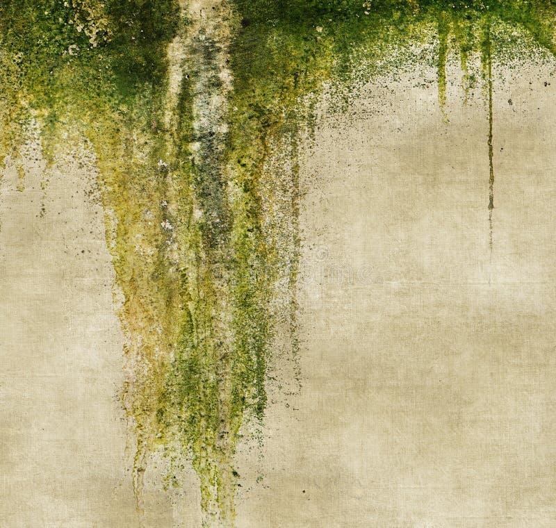 Grungevägg med genomblöt mossa vektor för bild för designelementillustration royaltyfri illustrationer