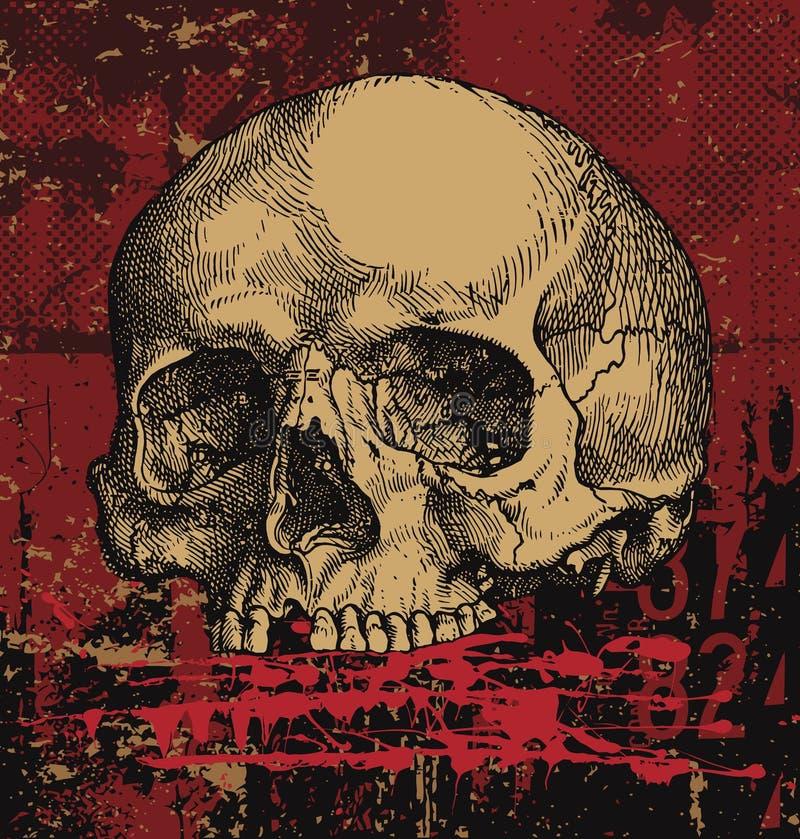grungy людской череп иллюстрация вектора