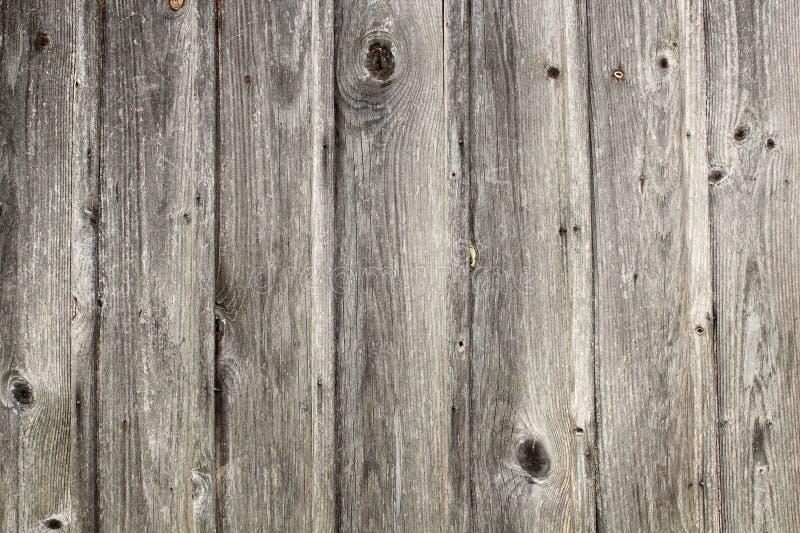 Grungy реальная елевая текстура планок стоковое изображение