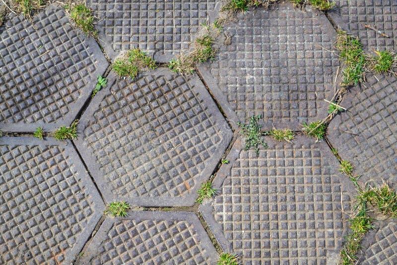 Grungy шестиугольная крыть черепицей черепицей безшовная дорожка TGarden сделанная из шестиугольных плит Трава выходить слябы Bac стоковая фотография
