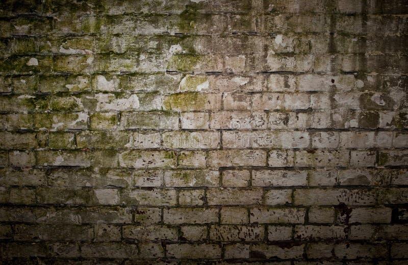 Grungy Backsteinmauer lizenzfreies stockfoto