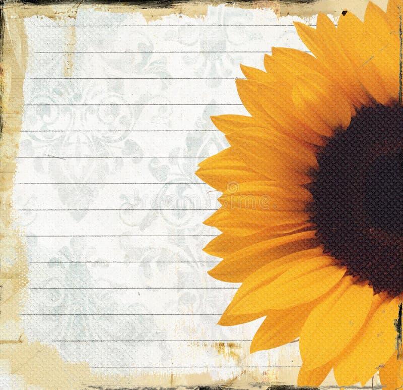 Grungy Briefpapier Mit Sonnenblume Stockbild - Bild von album ...