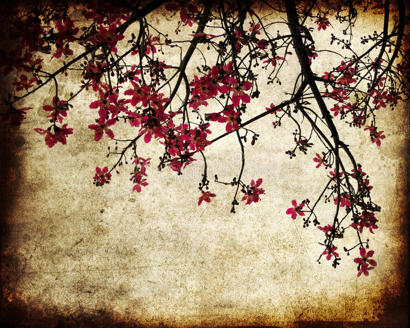 Download Grungy cherry blossoms stock illustration. Illustration of dirty - 6504200