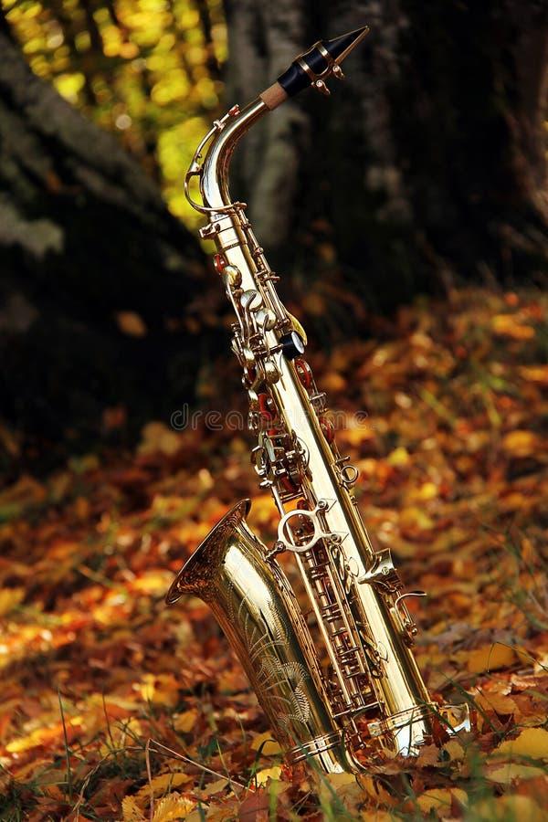 grungy gammal saxofon royaltyfri foto