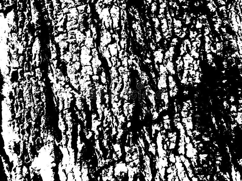 Grungy houten schorsoppervlakte Houten schorstextuur Oude textuur van houtraad vector illustratie