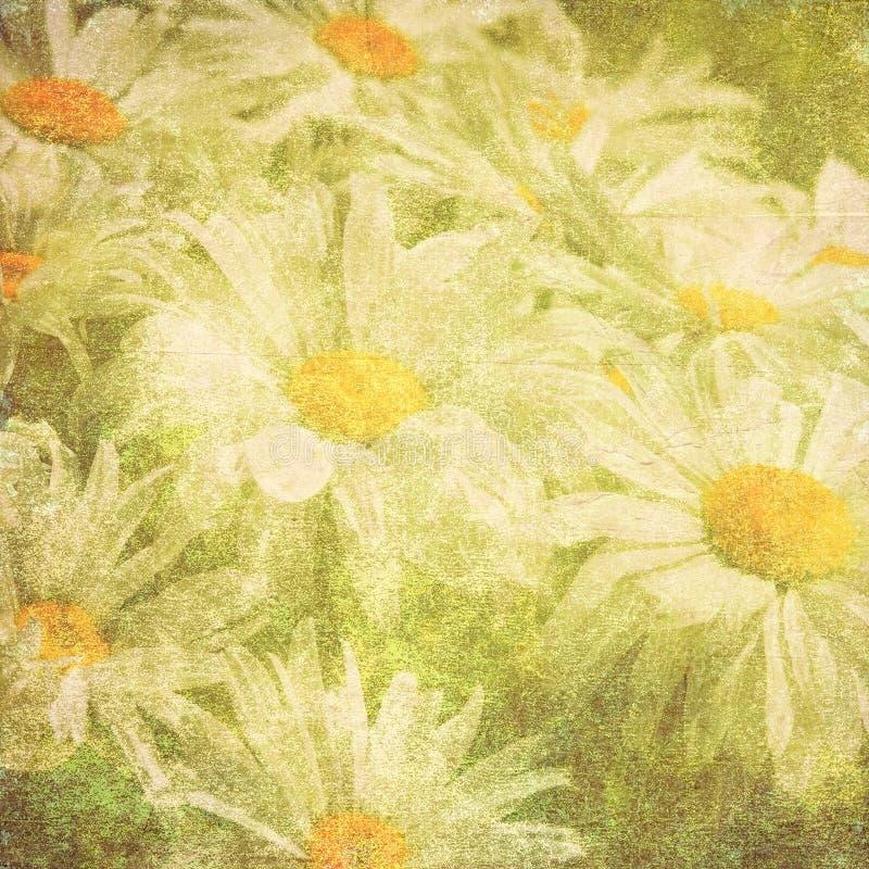 Grungy kwiat tekstura fotografia stock