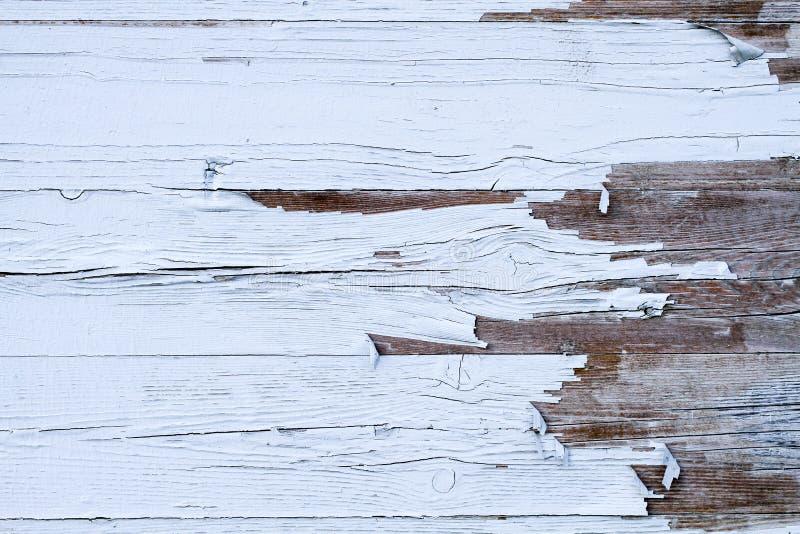 Grungy och gammal riden ut vit bakgrund för textur för timmerträvägg som utomhus markeras av lång exponering till beståndsdelarna royaltyfria bilder
