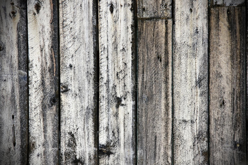 Download Grungy old wood background stock photo. Image of nature - 24497822