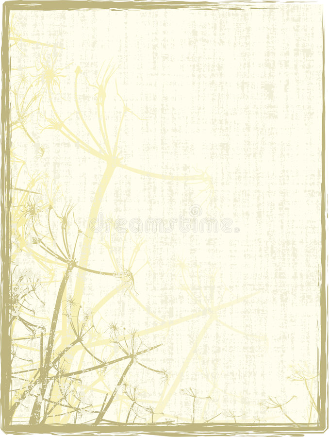 Grungy Organisch Frame vector illustratie