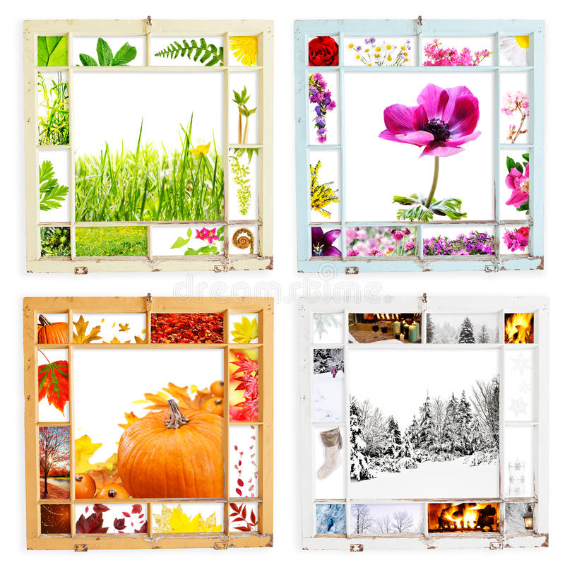Download Grungy seasonal samplers stock image. Image of shoots - 23694667